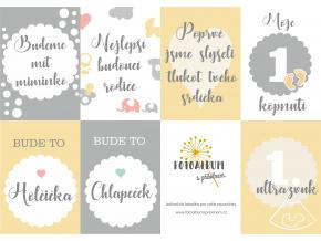 tehotenske milnikove karticky pdf zdarma